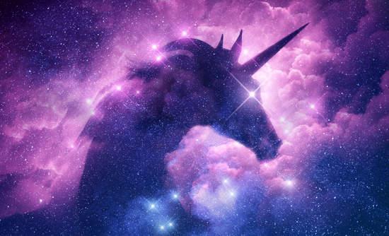 unicorn_sstock